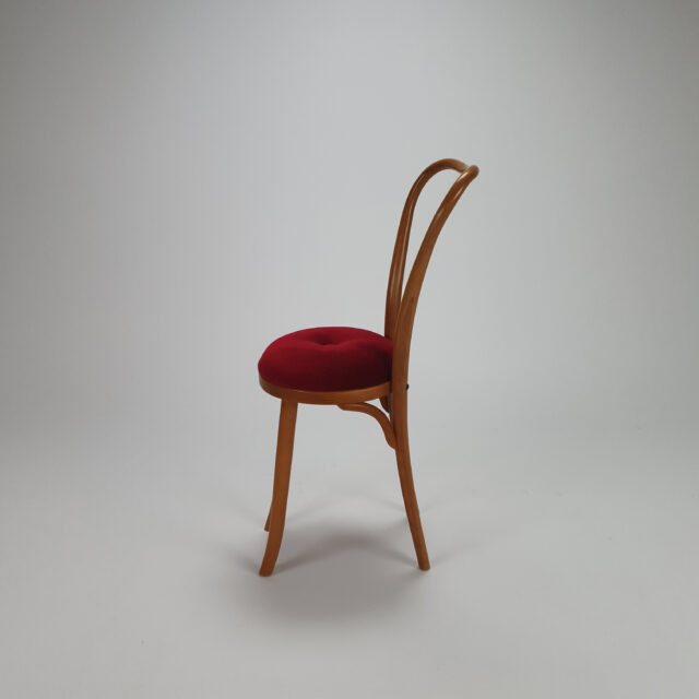 Rare Bentwood Side Chair, 1960s
